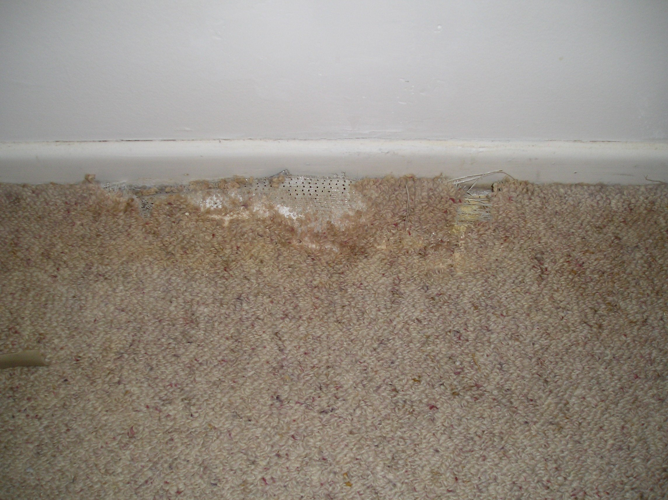 Patching Carpet Repair - Carpet Vidalondon